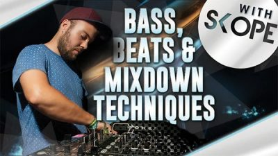 BASS BEATS MIXDOWN TECHNIQUES WITH MALUX